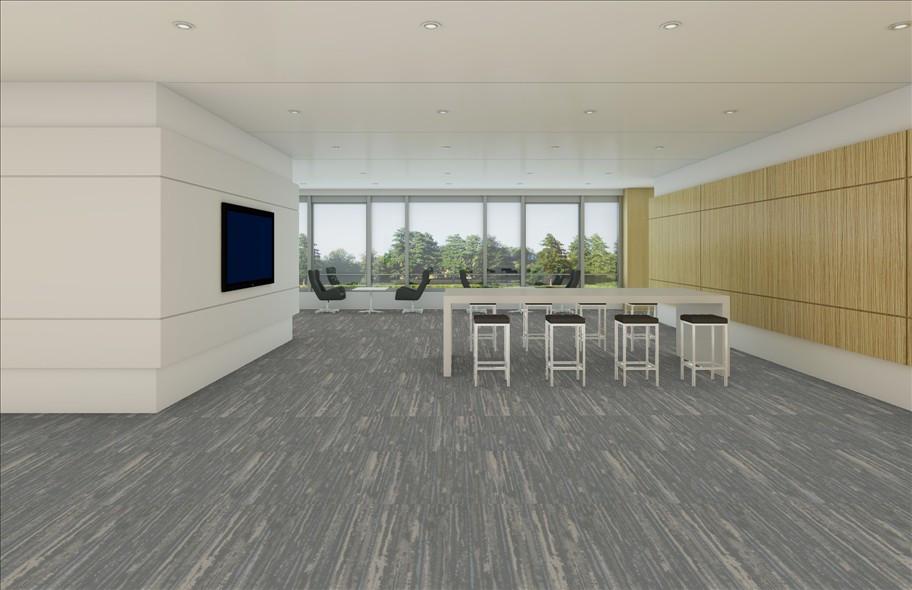 Shaw Renew Tile Recharge