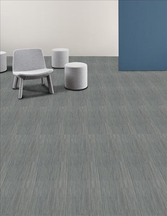 Shaw Rise Carpet Tile Ratio 12 Quot X 48 Quot Builder 48 Sq Ft Ctn