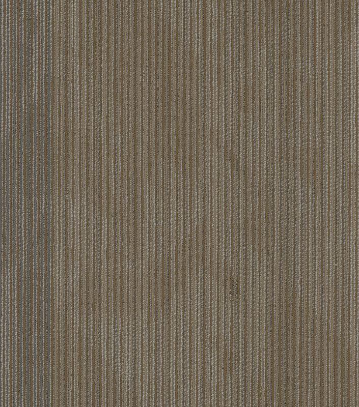 """Shaw Declare Carpet Tile Front Page 24"""" x 24"""" Premium(80 sq ft/ctn)"""