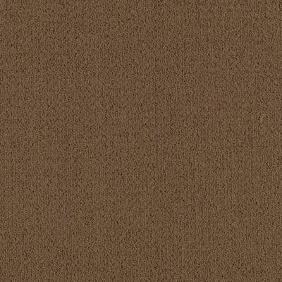 """Aladdin Commercial Color Pop Carpet Tile Tree Bark 12"""" x 36"""" Premium"""