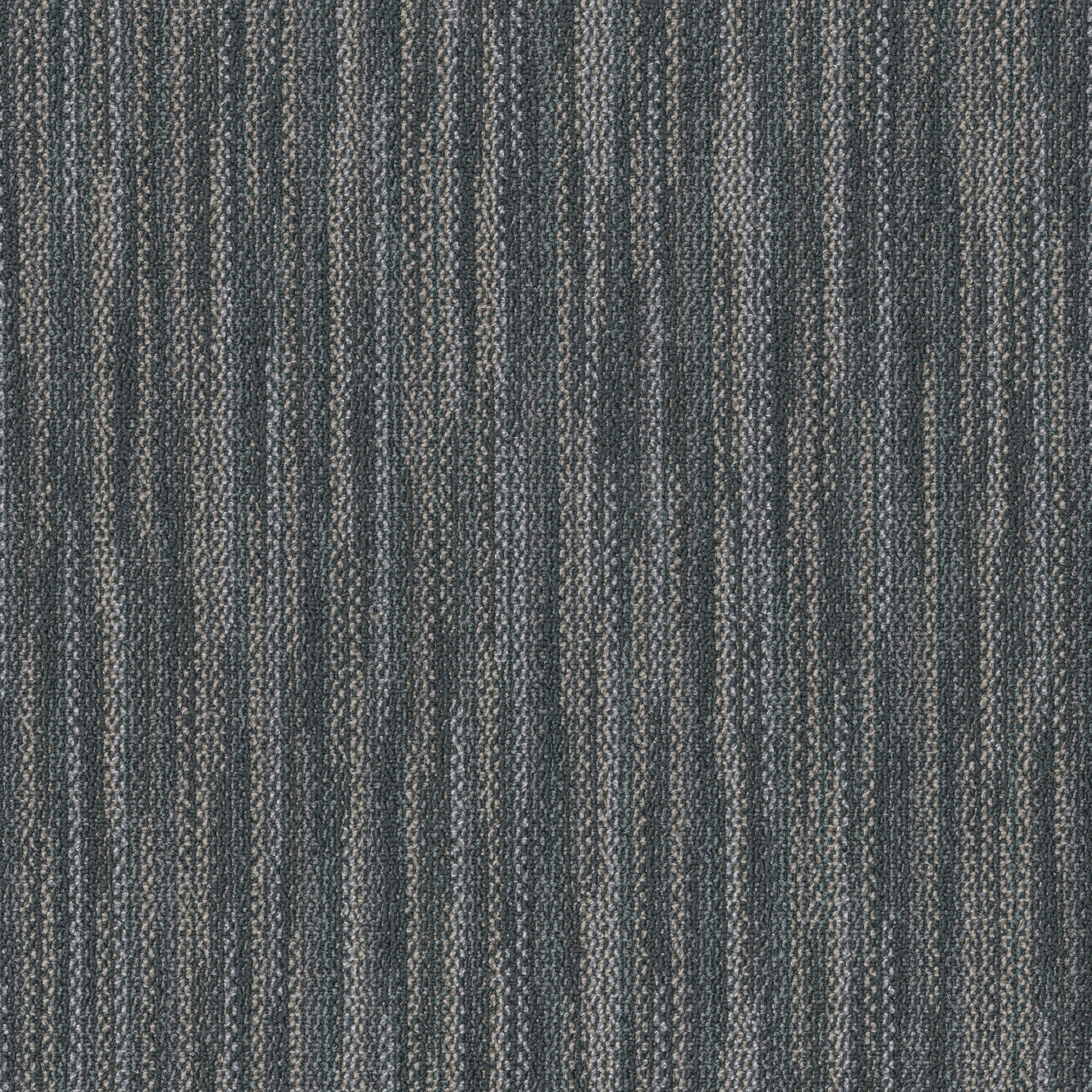 """Shaw Companion Carpet Tile Union 24"""" x 24"""" Premium(80 sq ft/ctn)"""