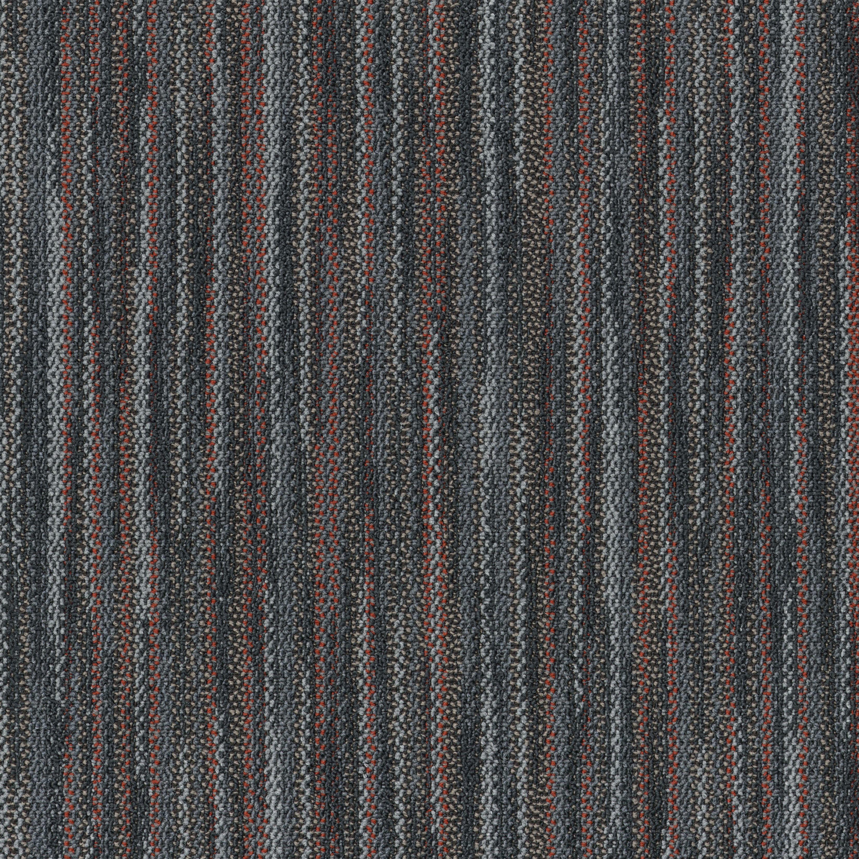 """Shaw Companion Carpet Tile Connect 24"""" x 24"""" Premium(80 sq ft/ctn)"""
