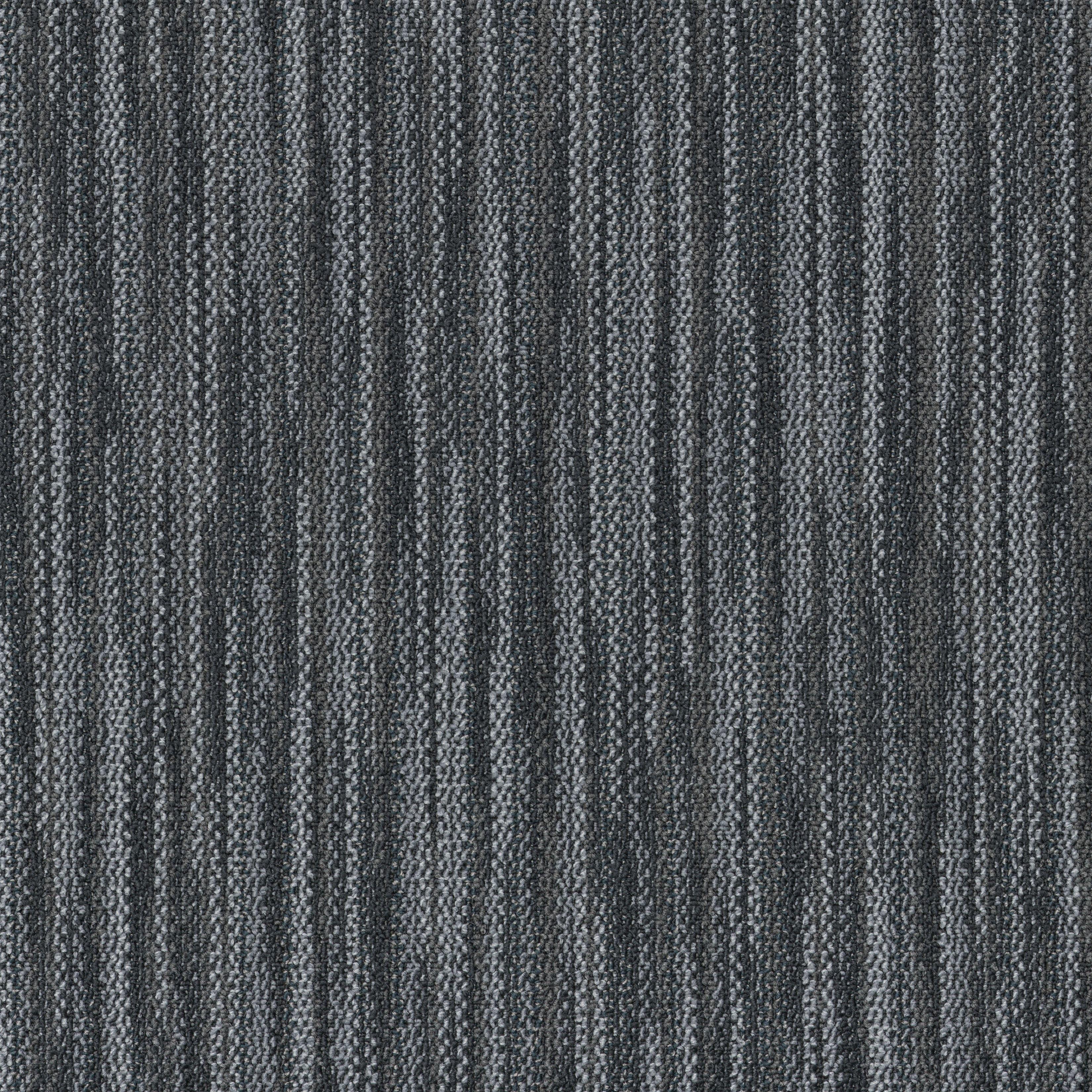 """Shaw Companion Carpet Tile Duo 24"""" x 24"""" Premium(80 sq ft/ctn)"""