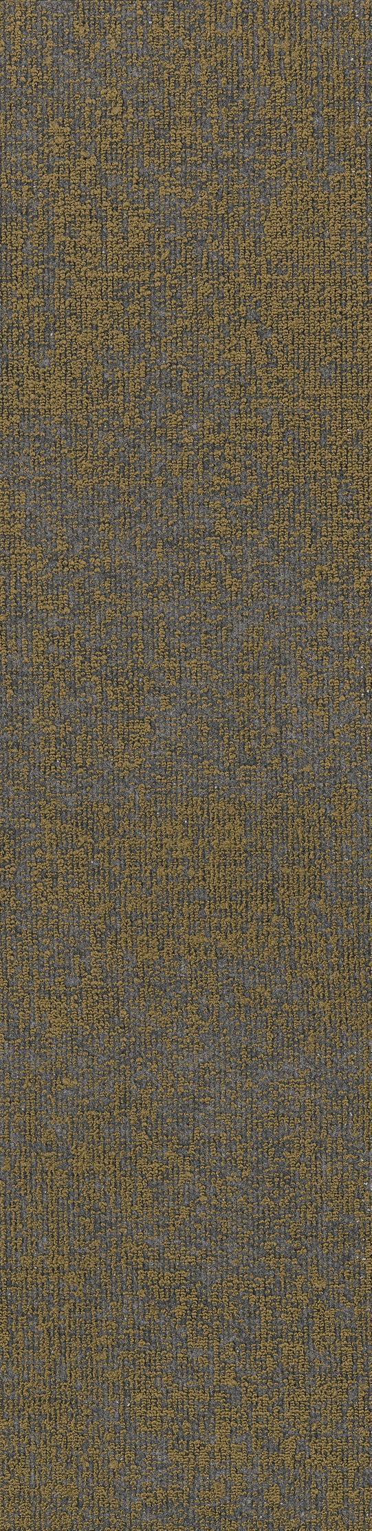 """Shaw Top Stitch Carpet Tile Olive 12"""" x 48"""" Builder(48 sq ft/ctn)"""