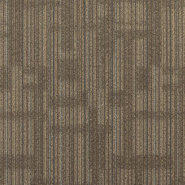 """Shaw Transparent Carpet Tile Pottery 24"""" x 24"""" Builder(48 sq ft/ctn)"""