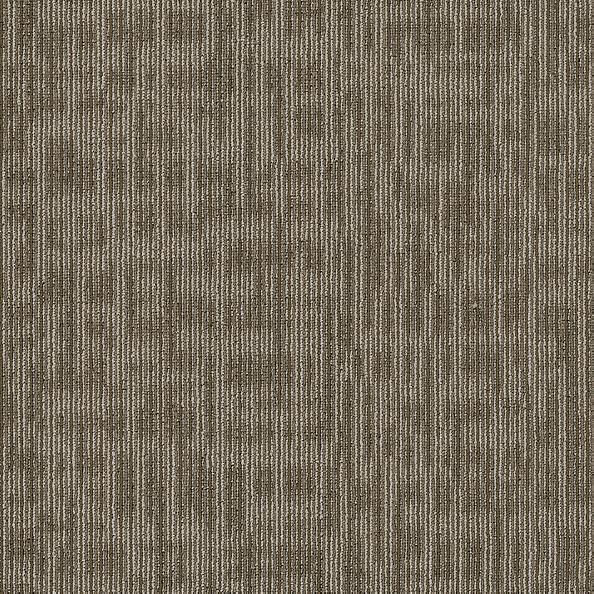 Shaw Genius Carpet Tile Premium (80 sq ft/ctn)-Scholarly