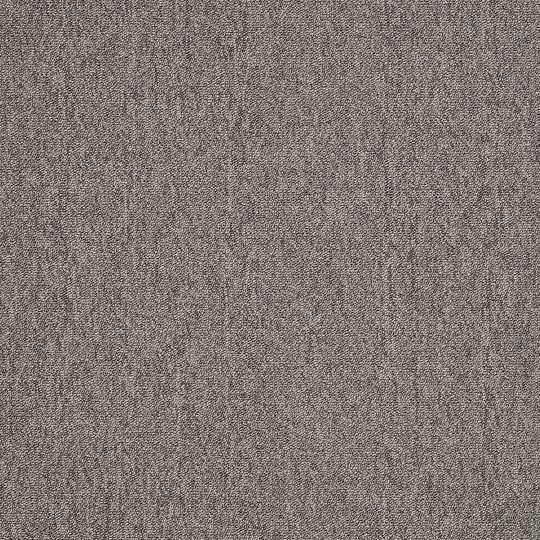 Shaw PetoII20 Carpet Tile Pure Titanium