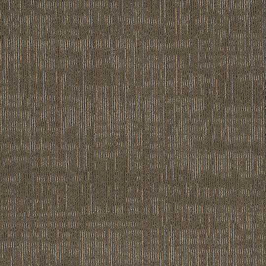 """Shaw Intent Carpet Tile Sierra 24"""" x 24"""" Builder(80 sq ft/ctn)"""