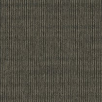 "Pentz Sidewinder Carpet Tile Caravan 24"" x 24"" Premium (72 sq ft/ctn)"