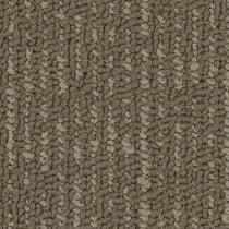 Pentz Formation Carpet Tile Trench