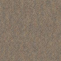 Pentz Premiere Carpet Tile Film Festival