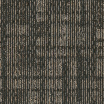 Pentz Hoopla Carpet Tile Buzz