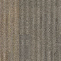 "Aladdin Commercial Design Medley II Carpet Tile Intermix 24"" x 24"" Premium"