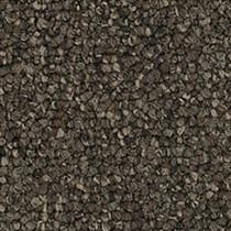"Pentz Diversified Carpet Tile Bizarre 24"" x 24"" Premium (72 sq ft/ctn)"