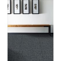 Shaw Genius Carpet Tile Premium (80 sq ft/ctn)