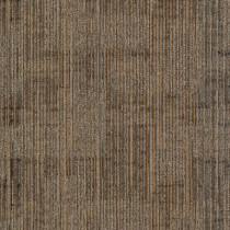 """Aladdin Commercial Authentic Format Carpet Tile Defined Sculpture 24"""" x 24"""" Premium"""