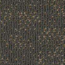 """Pentz Animated Carpet Tile Eager 24"""" x 24"""" Premium (72 sq ft/ctn)"""