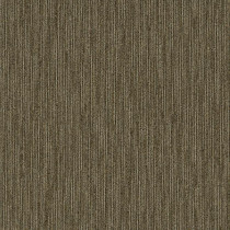 "Shaw Skill Carpet Tile Expertise 24"" x 24"" Builder(80 sq ft/ctn)"