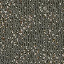 """Pentz Animated Carpet Tile Exuberant 24"""" x 24"""" Premium (72 sq ft/ctn)"""