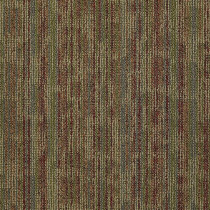 "Shaw Hook Up Carpet Tile Juice 24"" x 24"" Builder(48 sq ft/ctn)"