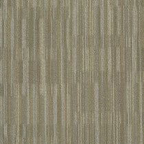 "Shaw Primary Carpet Tile Khaki 24"" x 24"" Builder(48 sq ft/ctn)"
