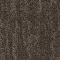 "Shaw Dream Carpet Tile Nestle 24"" x 24"" Builder(48 sq ft/ctn)"
