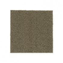 """Aladdin Commercial Color Pop Carpet Tile Drift Wood 24"""" x 24"""" Premium"""