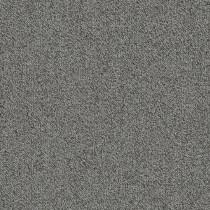 "Shaw Belong Carpet Tile Greige 24"" x 24"" Premium"