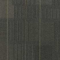 Shaw Diffuse Ecologix® Es Carpet Tile Movement Premium