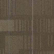 Shaw Diffuse Ecologix® Es Carpet Tile Nomad Premium