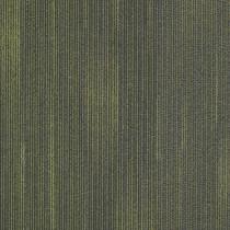 """Shaw Direction Carpet Tile Flip 24"""" x 24"""" Premium"""
