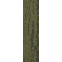 Shaw Discover Carpet Tile Moss