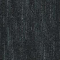 Shaw Filter Carpet Tile clear