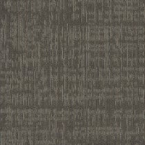 """Shaw Intent Carpet Tile Woodsmoke 24"""" x 24"""" Premium"""