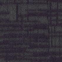 "Shaw Memory Carpet Tile Insight 24"" x 24"" Premium"