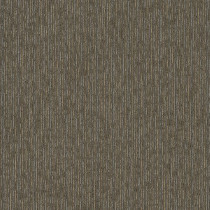 "Shaw Purpose Carpet Tile Sierra 24"" x 24"" Premium"
