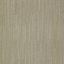 "Shaw Field Carpet Tile Sight 24"" x 24"" Builder(48 sq ft/ctn)"