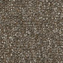 "Pentz Diversified Carpet Tile Varied 24"" x 24"" Premium (72 sq ft/ctn)"
