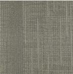 """Shaw Haze Carpet Tile Notion 18"""" x 36"""" Builder(45 sq ft/ctn)"""